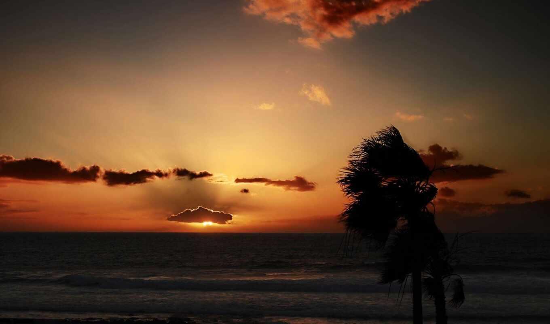 закат, небо, море, дерево, фотообои, рассвет, горизонт, anonymous, волна, zero