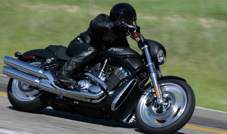 harley, davidson, мотоциклы, moto, черный, гонщик,