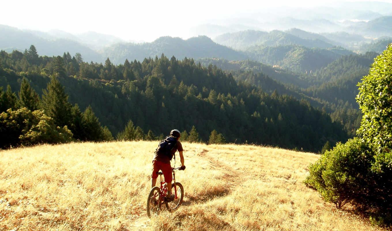 пейзажи -, обоях, добавлено, nazad, года, camping, california, check,