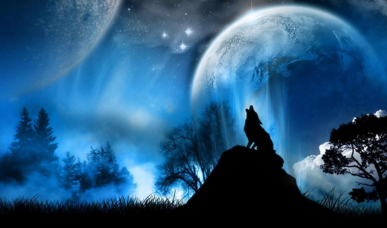 wolf, fantasy, desktop, info, save, link, high, космос,