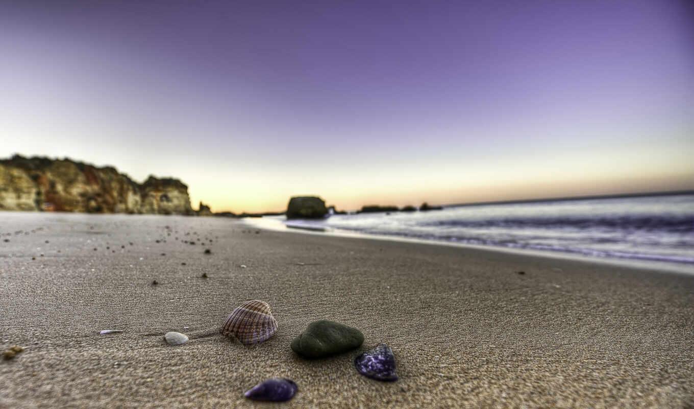 ракушки, песок, ракушка, камни, вода, берег, пейзажи, пляжи, beach, пляж, море, wallpapers, های, ۰۰,