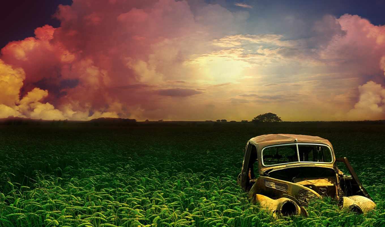 landscape, природа,