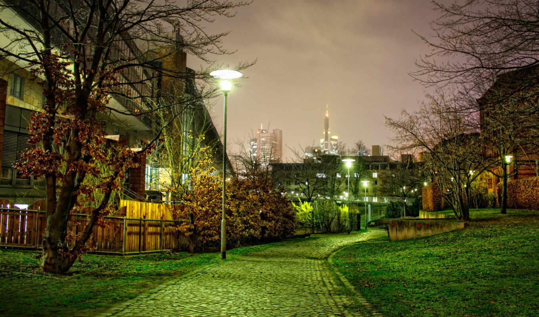 деревья, ночная, дорожка, улица, природа, пейзаж,
