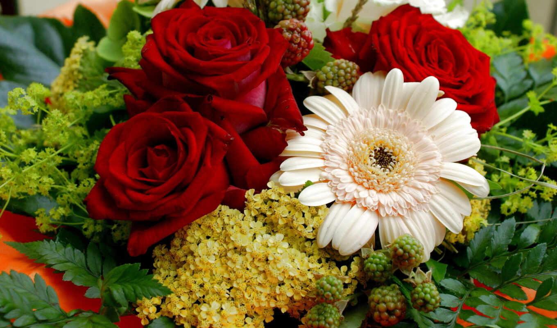 цветы, букет, розы, букеты, категория, роз, совершенно,