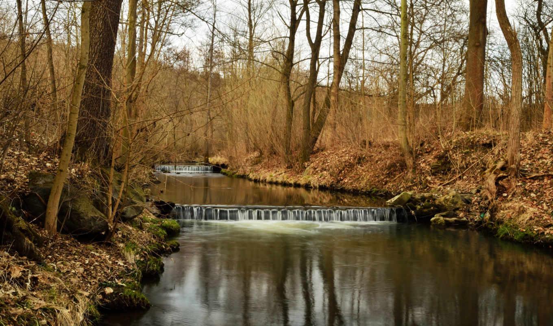 весна, река, природа, ранняя, перекаты, лес, alcatel, деревя, цветы,