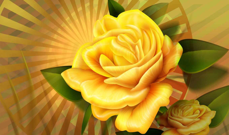 цветы, природа, роза, shops, flowers, desktop, yellow,