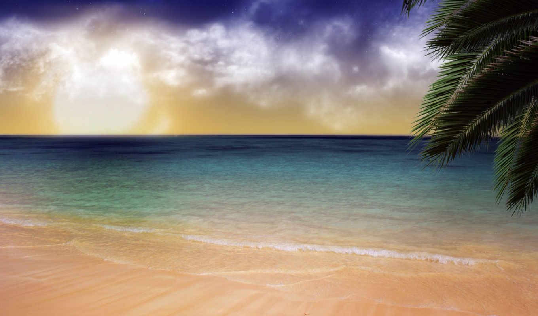 palm, ocean, закат, море, фоны, остров, пляж, океана, берег, пальмы, песок,