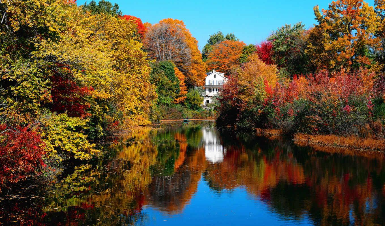 осень, загрязнение, slide, химическое, октября,