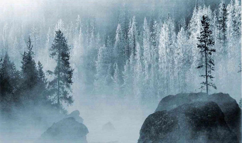 лес, зима, горы, метель,