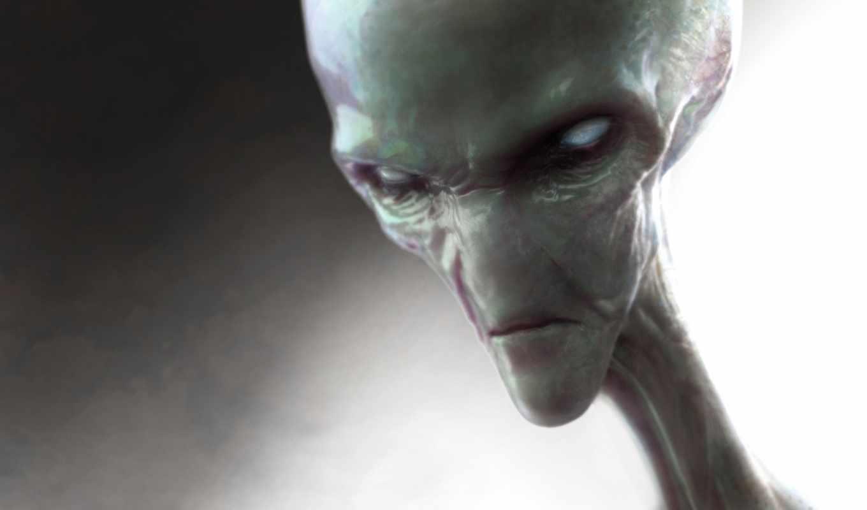 grey, инопланетяне, называемыми, очень, инопланетян, пришельцами, добродушными, ufo, rasa,