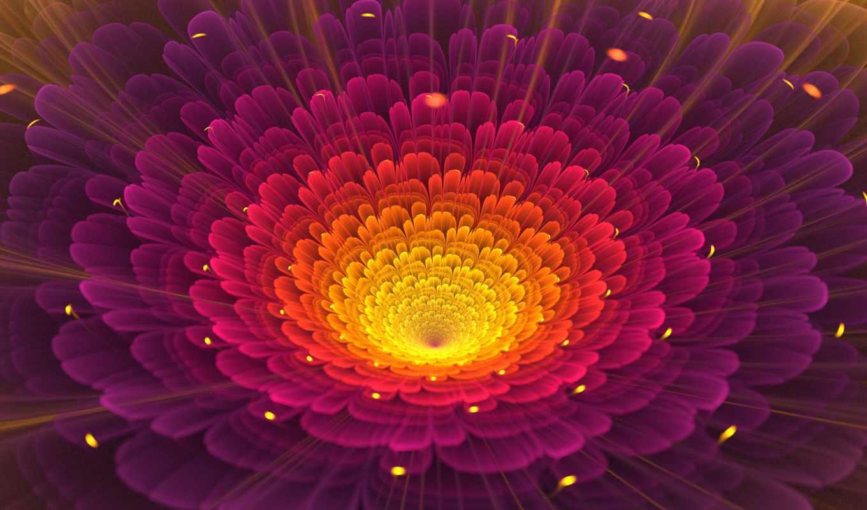 flowers, blütenblatt, gorgeous, ipad, flor,