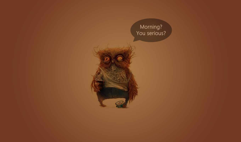 утро, сова, кофе, серьезно, شب, ipad, funny,