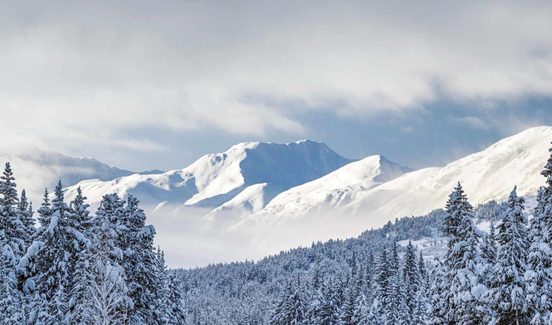 winter, панорамный, windows, красивая, холодная, снег,