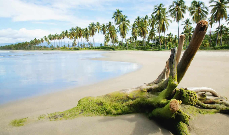 landscape, summer, cool, пляж, море,