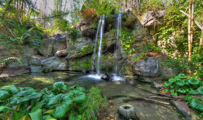 растения, водопад, скалы, природа, park,