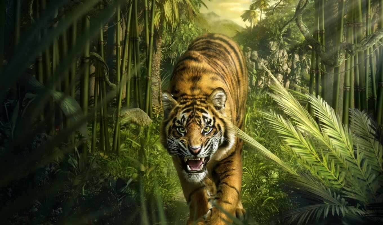 тигр, jungle, кот, рык, animal, art, lion, fore