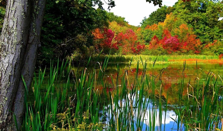 природа, озера, реки, небо, озеро, landscape,