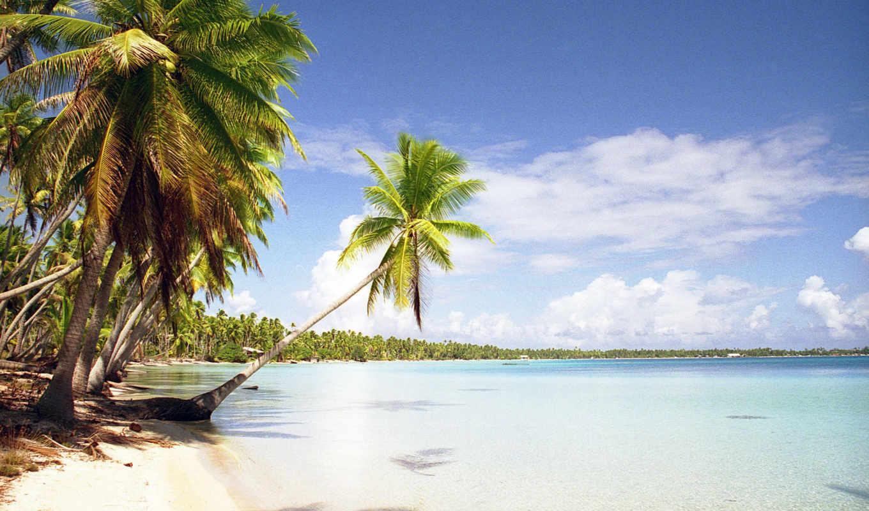 пляж, пальмы, тропики, океан, summer,