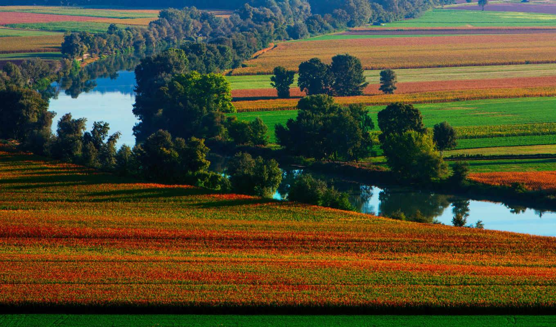 природа, река, summer,