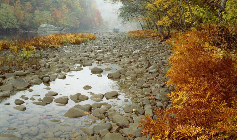 осень, река, деревья, лес, камни, big, картинка, south, fork, nature, similar,