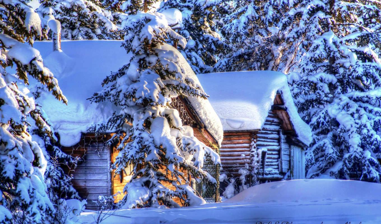 аляска, зима, снег, ели, природа, пейзажи,