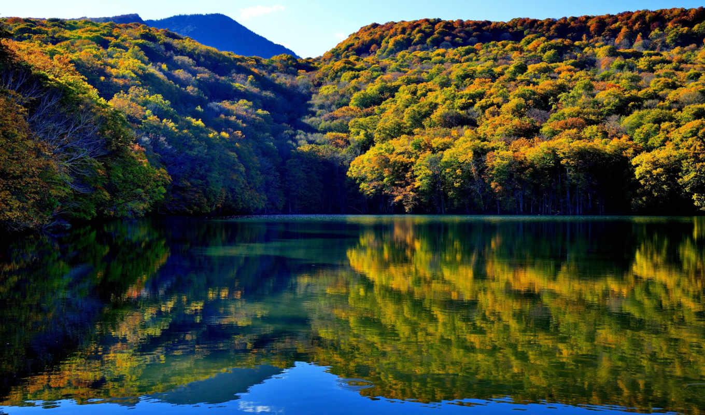 япония, красивый, природа,