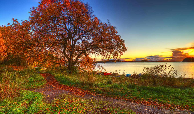 осень, озеро, природа, деревья, небо, лодки, landscape, трава, листья,