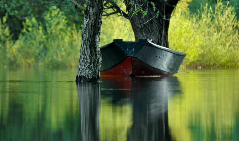 ,лодка,деревья,вода,