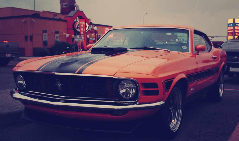 mustang, ford, red, car, регистрации, без,