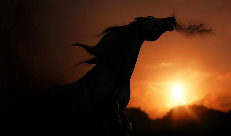 deep, inside, buried, лошадь, закат, stellabella,