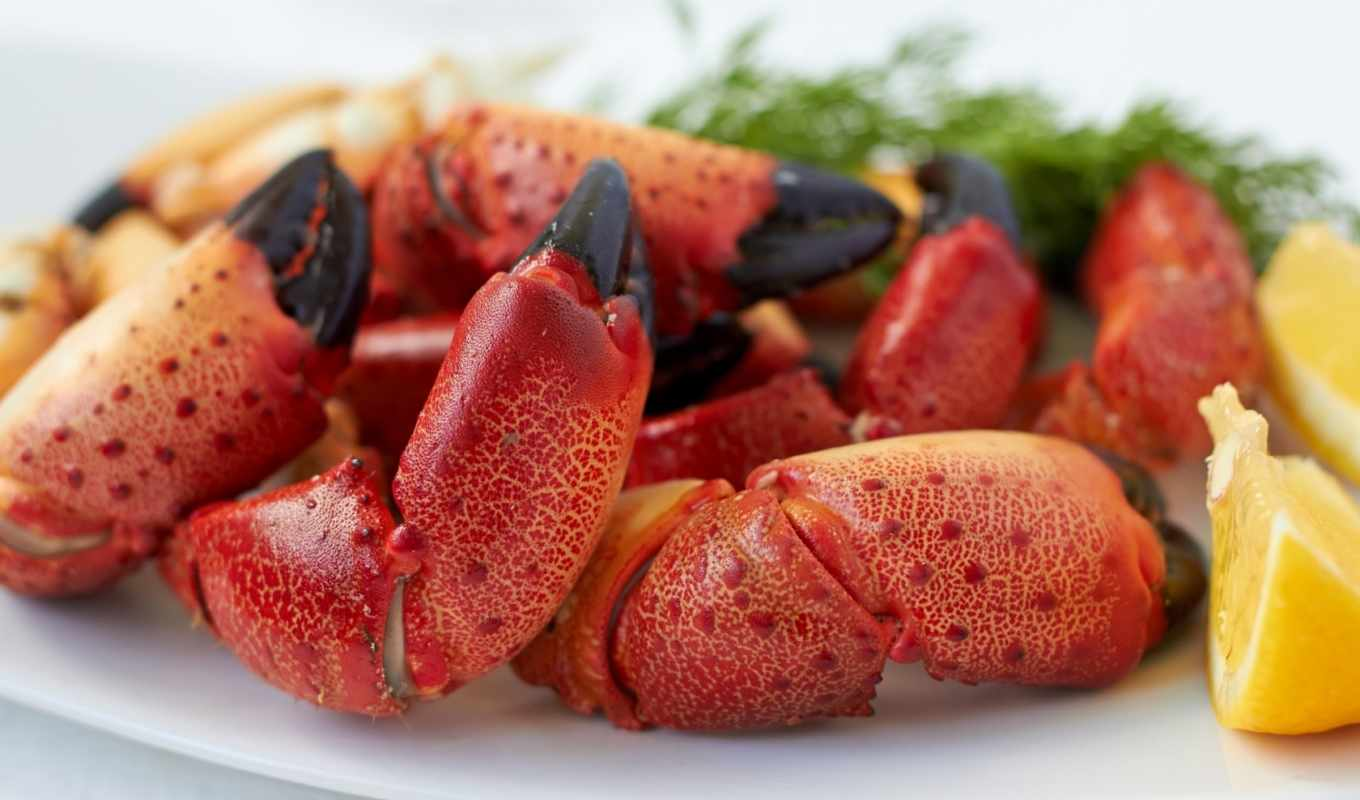 images, камень, getty, crab, stock, photos, дары, еда, pictures,