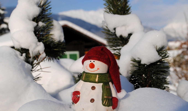 снеговик, зи,