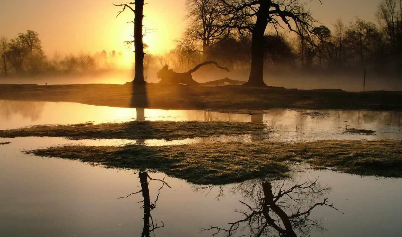 красивые, природы, природа, фотографий, заставки, daily, осень, только, красивых, подборка,