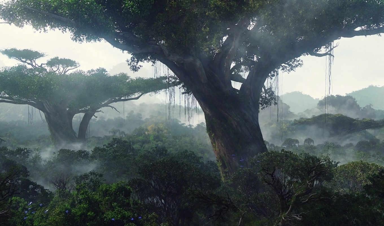 jungle, аватар, качестве, высоком, широкоформатные, графика, деревья,