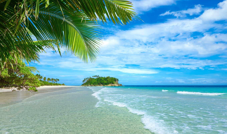 море, пляж, природа, summer, песок, берег, karib, небо, landscape, palm