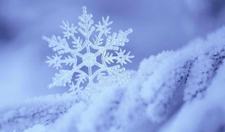 снежинка, снег, голубое, белое, зима, белый, день, чтобы,