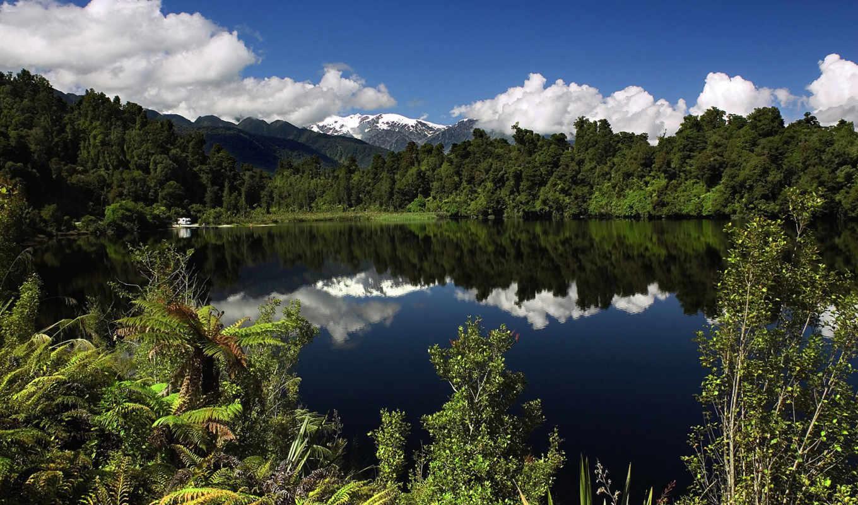зеландии, новой, новая, zealand, природа, природы,