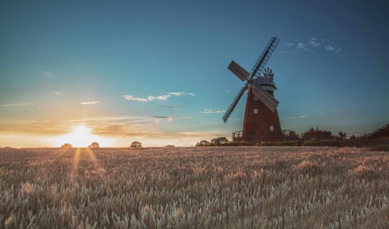 поле, ветряная, rising, sun, утро, mill, трава, web,