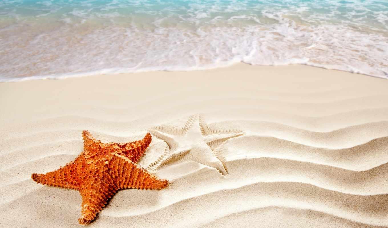 star, морская, берег, морские, море, звезды, берегу, песке, природа, ocean, моря,