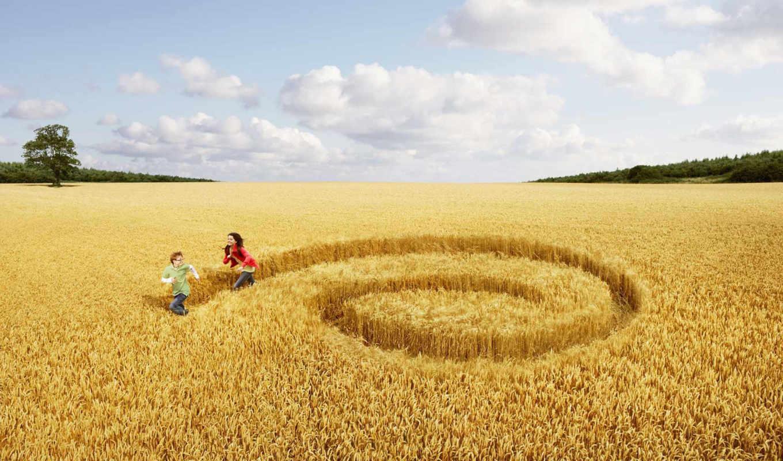 поле, девушка, люди, настроения, boy,