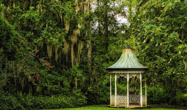 karolina, беседка, деревя, carolina, gardens, разделе, magnolia, south, сады, priroda, южная, charleston,