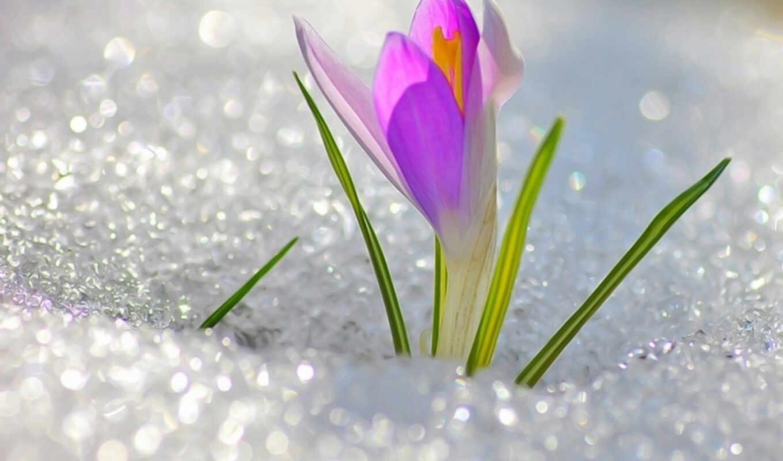 пахнет, весной, марта, еще, люблю, весенние, уже, air, первые, дни,