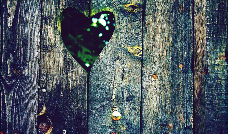 разное, забор, сердце, mich, доски, большая, подборка,