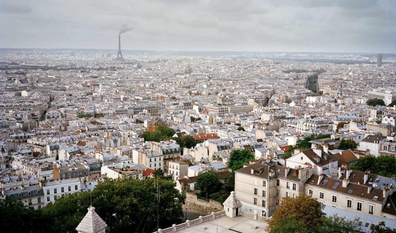 деревья, париж, дома, крыши, небо, франция, белое, окна, горизонт, здание, картинка, картинку,
