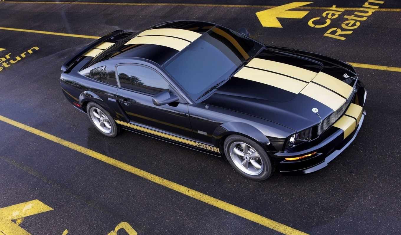 shelby, ford, mustang, tag, wallpaperpage, front,