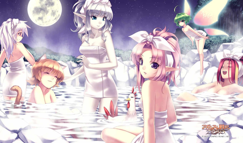 agarest, katsuyuki, zero, animal, hirano, senki, elf, night, moon, catgirl, bath, war, record,