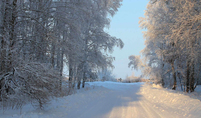 природа, времена, года, дороги, winter, деревья,