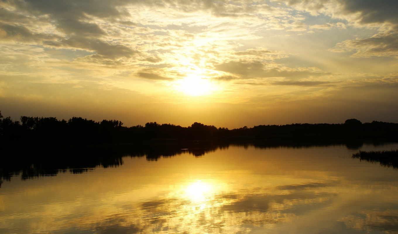 солнечный, природа, свет,