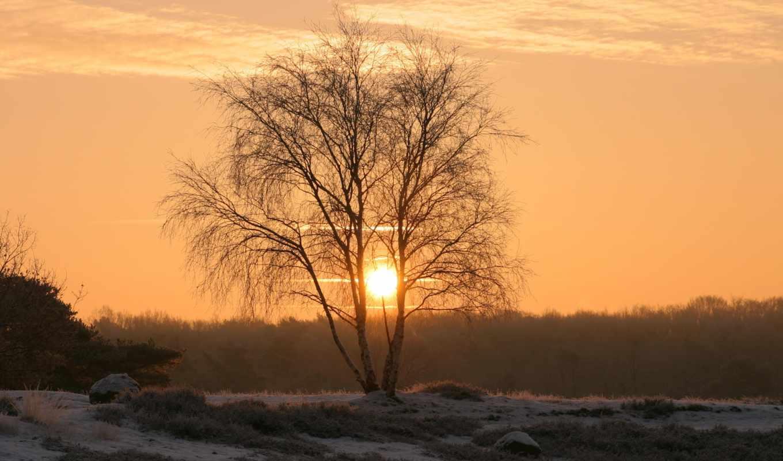 природа, небо, summer, закат, winter, лес, landscape, утро, горы,