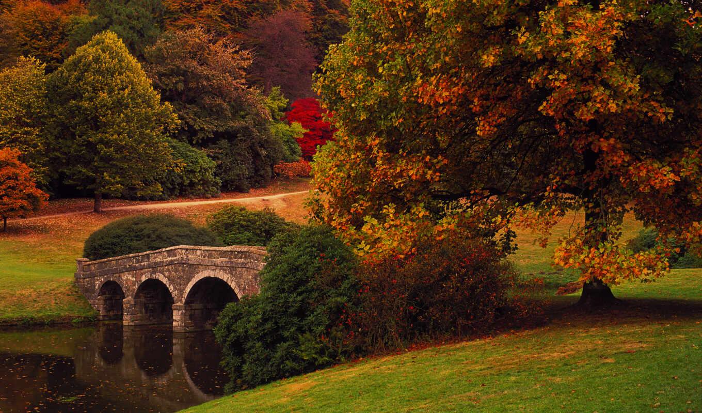 oir, funart, park, осень, landscape